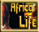 Africa Life Festival Heilbronn AFROTAK TV cyberNomads Black German Yello Pages Afrika Deutschland Kamerun Freundeskreis e.V.
